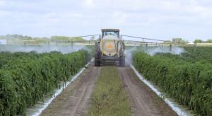 EFSA: 96,7 proc. żywności w Polsce spełnia wysokie kryteria dotyczące pozostałości pestycydów