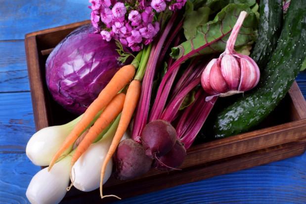 Allium: Rynek warzyw będzie bardzo oporny na regulacje (wywiad)