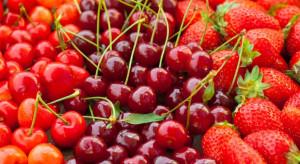 UOKiK przedstawi decyzję chroniącą producentów owoców