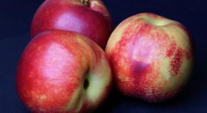 Badacze: warzywa i owoce w czarnych opakowaniach lepiej się sprzedają