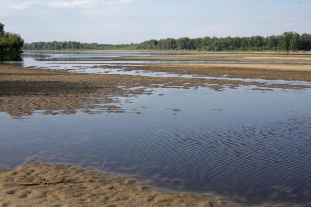 IMGW:  rekordowo niski poziom wody w rzekach w Polsce