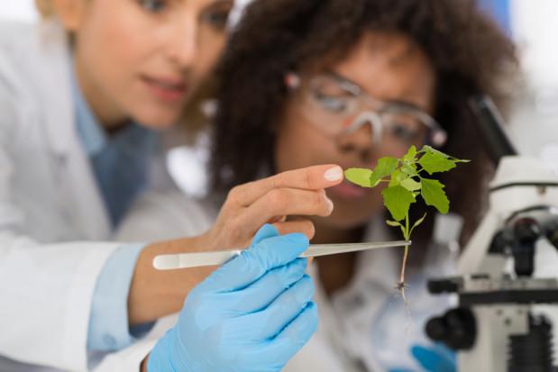 Naukowcy apelują do UE o dopuszczenie edycji genomów w rolnictwie