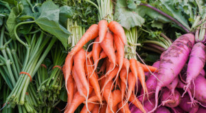 Warzywa w tym roku nie będą tanie