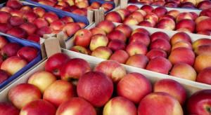 Rosja będzie się bacznie przyglądać białoruskim jabłkom