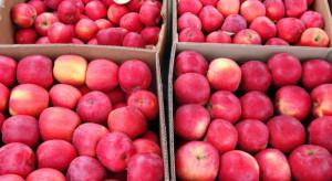 Rosja zawiesza import owoców ziarnkowych i pestkowych z Chin