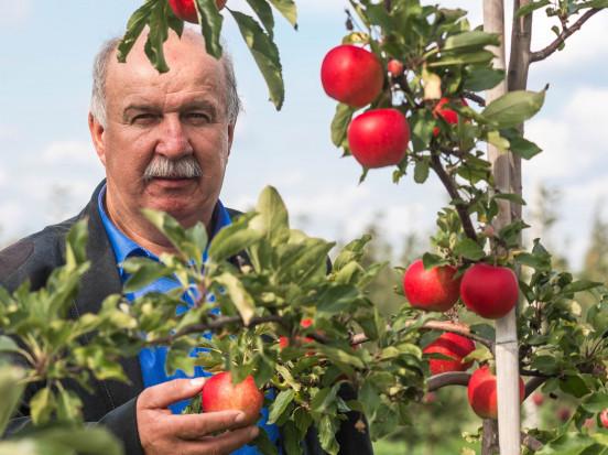 Piłka jest po stronie sadowników - wywiad z prezesem Sad-Polu