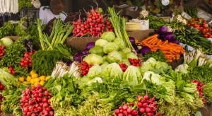 Inflacja rośnie głównie przez drożejącą żywność
