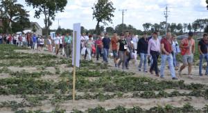 Technologie uprawy truskawek podczas Warsztatów z Doradcą Jagodowym (zdjęcia)