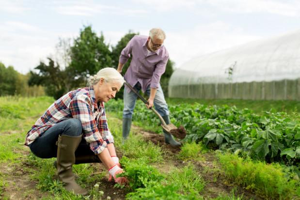 Rolnicy oczekują obniżenia wieku emerytalnego