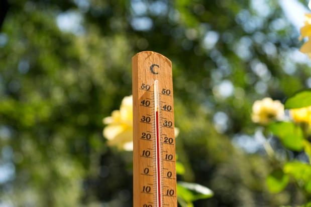 Poprawa pogody. W weekend zrobi się gorąco