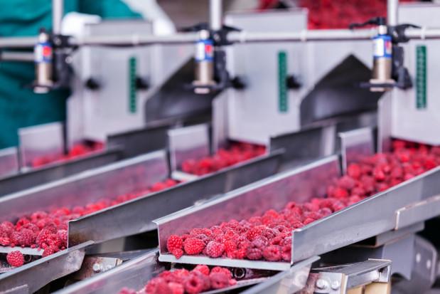 Niższe zbiory i wyższe ceny wpłyną na konkurencyjność firm przetwórczych - rozmowa z sekretarz generalną KUPS