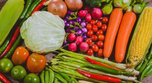 GUS o cenach: W okresie styczeń-lipiec staniały m.in. owoce i prąd, zdrożały warzywa