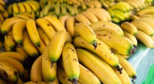 Banany dobrej jakości mocno zdrożały. Ceny gorszego gatunku stoją w miejscu