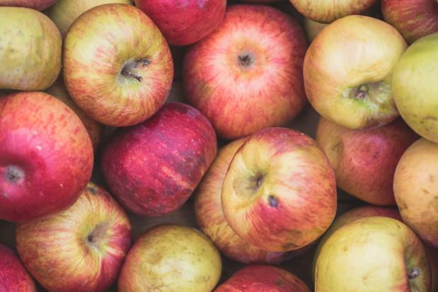 Rosną ceny jabłek przemysłowych. Jakie są obecnie stawki?