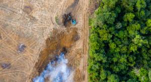 Brazylia częściowo cofa zakaz wypalania terenów pod uprawy