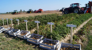 Krajowe Dni Ziemniaka - prezentacje maszyn oraz środków do produkcji