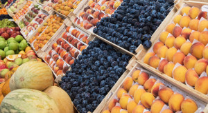 Bronisze: Utrzymują się wysokie ceny jabłek. Wahania podaży jagodowych