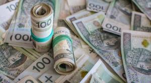 Średnie dopłaty dla rolników w UE  259 euro, w Polsce nieco ponad 200