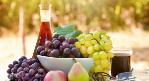 Fundacja Winiarnie Zamojskie wspiera polskich winiarzy i sadowników