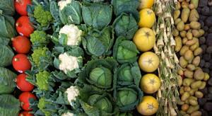 Niższe zbiory warzyw przyczynią się do wyhamowania tempa wzrostu cen żywności