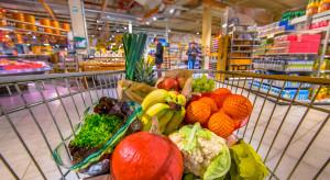 Koszyk cen: Jak zmieniały się ceny owoców i warzyw na przestrzeni ostatnich lat?