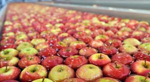 Cztery grupy producentów owoców mają kłopoty z ARiMR. Co się dzieje na Lubelszczyźnie?