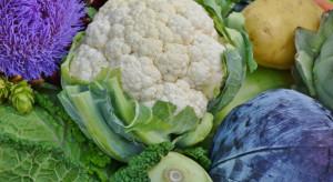 Mazowieckie: 300 główek kapusty, kalafiory i brokuły padły łupem złodziei