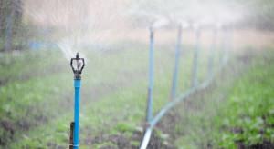 ARiMR: 25.09 rusza nabór wniosków o dotacje na inwestycje w nawadnianie