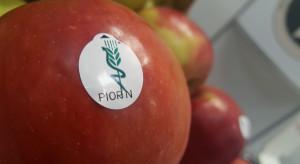 Nowe prawo zdrowia roślin – ważne zmiany i nowe obowiązki przedsiębiorców (wywiad)