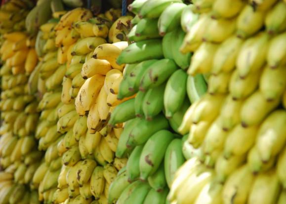 Banany będą drożeć. Rosną koszty utrzymania produkcji