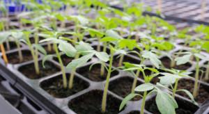 CopaCogeca: Nie dla patentowania roślin i zwierząt