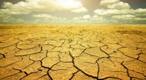 Konsekwencje ocieplenia klimatu dotkną polską gospodarkę rolną (wideo)