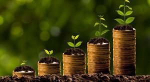 Szynkowski vel Sęk: Uzyskaliśmy narzędzie, aby przyśpieszyć wyrównanie dopłat dla rolników