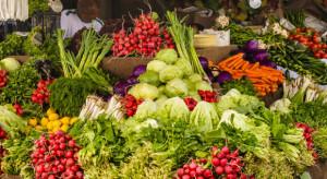 Bronisze: Stabilne ceny warzyw gruntowych. Mniejsza podaż warzyw spod osłon