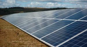 Enea wybuduje wielkoobszarowe farmy fotowoltaiczne na terenach rolnych (wideo)
