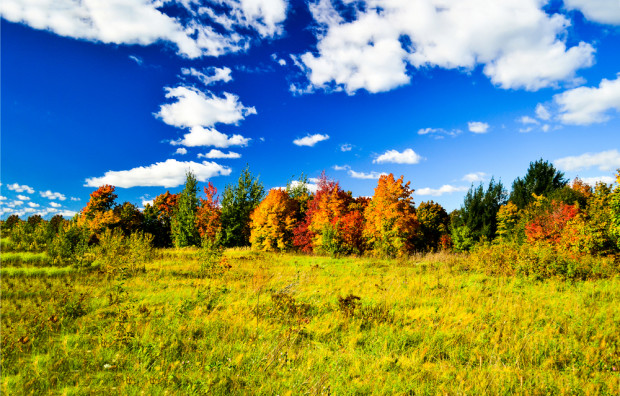 Pogoda: Najbliższe dni upłyną pod znakiem pogodnej aury