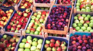 Rynek Bronisze: Mimo dużej podaży utrzymują się wysokie ceny jabłek