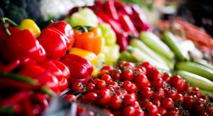 Bronisze: Stabilne ceny warzyw korzeniowych i pomidorów spod osłon