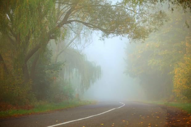 IMGW ostrzega przed silną mgłą w czterech województwach