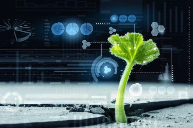 Drony, robotyzacja rolnictwa oraz cyfrowe uprawy drogą do efektywnej produkcji?