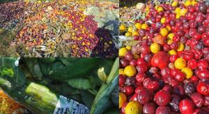 Setki kilogramów warzyw i owoców wyrzucono na łąkę na warszawskim Tarchominie