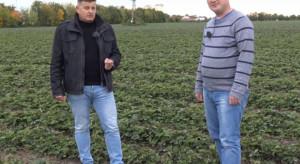 Doradca Jagodowy na konferencji SiO: technologie w uprawie truskawek, ochrona, nawożenie (wideo)