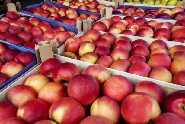 Kolumbia otworzyła się na polskie jabłka