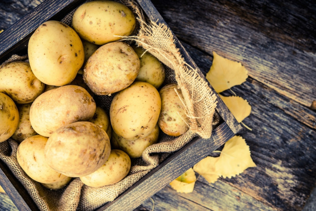 Ziemniaki uzupełniają dietę podczas aktywności fizycznej