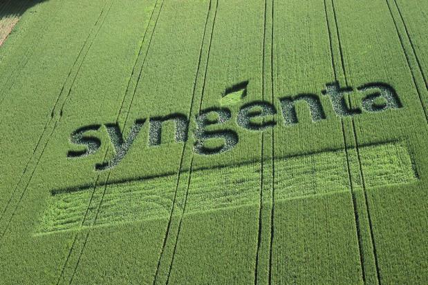 Syngenta wspiera rozwój rolnictwa zrównoważonego