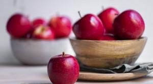 Bingo Gala  - nowa odmiana jabłka z Południowej Afryki