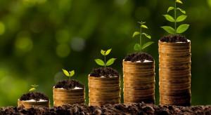 ARiMR: Blisko 4 mld zł zaliczek na poczet dopłat bezpośrednich na kontach rolników