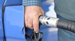 Rynek paliw: Wyjazdy na Wszystkich Świętych tańsze niż roku temu