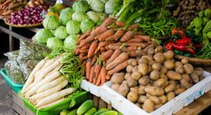 Bronisze: Spada podaż krajowych warzyw spod osłon