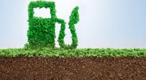 Firma Warter Pro Fuels rozpoczęła produkcję ekologicznych benzyn alkilatowych